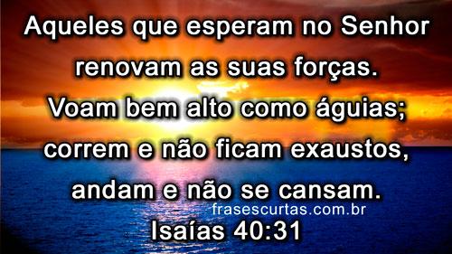 versiculos-biblicos (1)