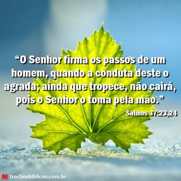 Salmos-37-2324