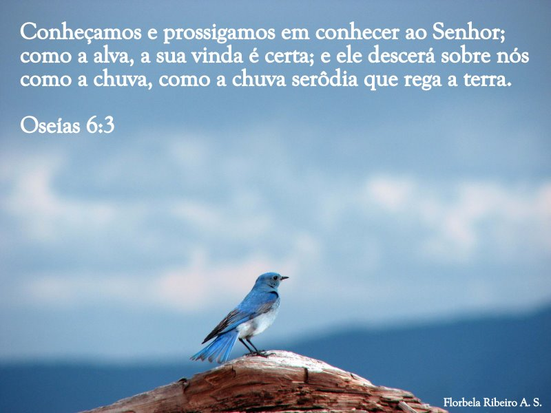 imagens-imagens-com-versiculos-biblicos-17